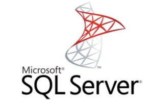 sql reporting services consultanin firm